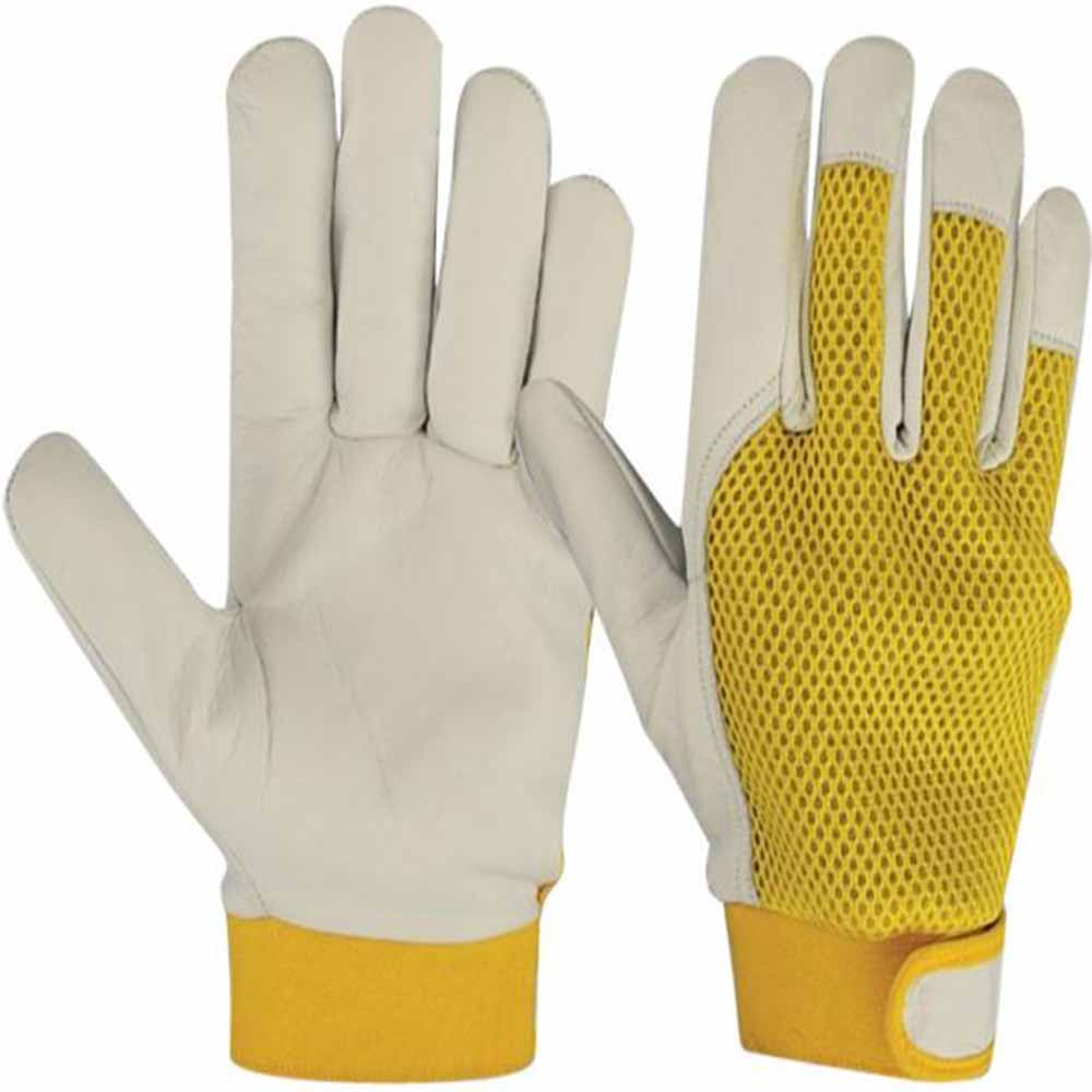Gloves Supplier in Dubai UAE